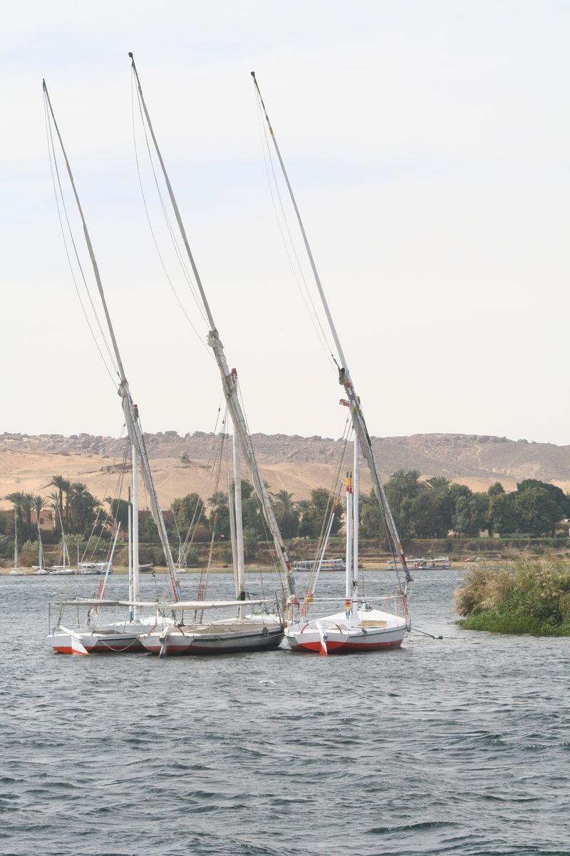 02-09 Egypt 240